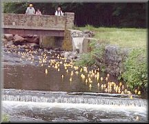 Meriden Lions Club Duck Race
