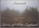 [Spirit of New England Award]